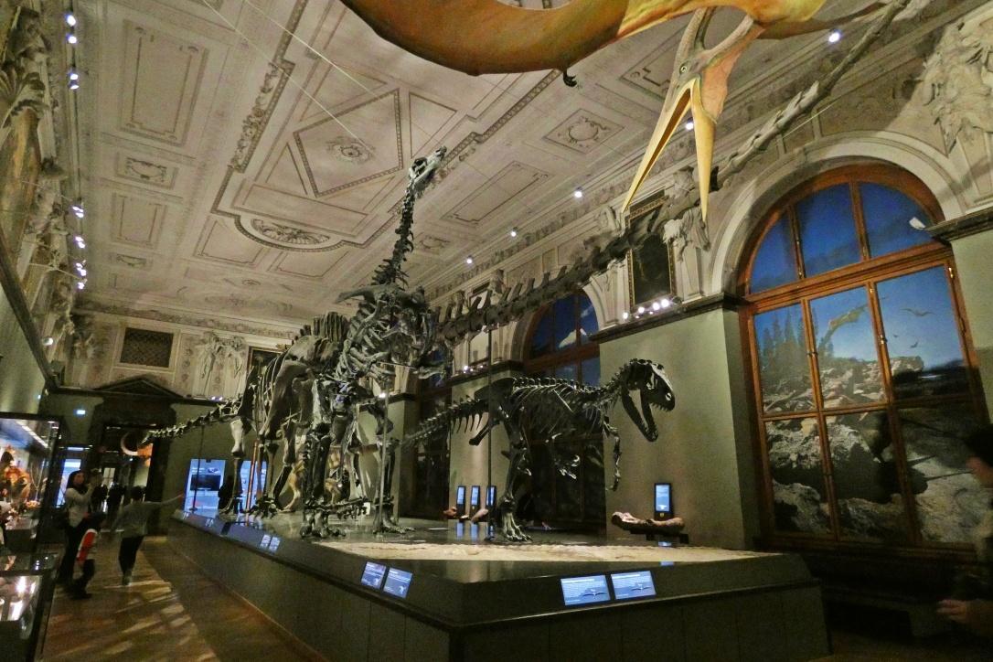 austria-vienna-travel-viajar-museo-historia-natural